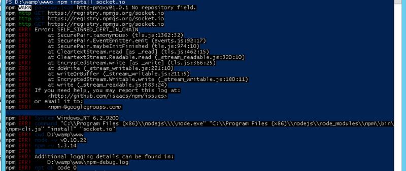 npm_install_error.png