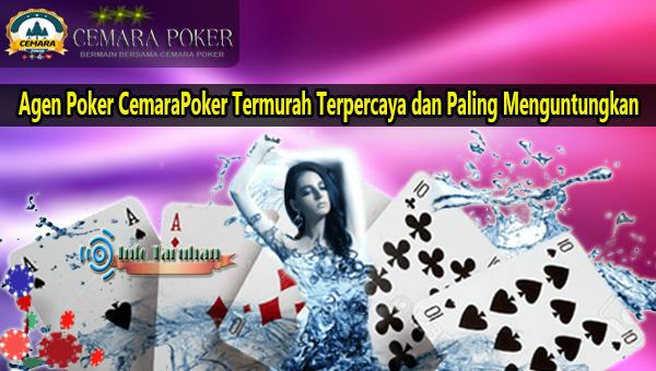 Agen Poker CemaraPoker Termurah Terpercaya dan Paling Menguntungkan.jpg