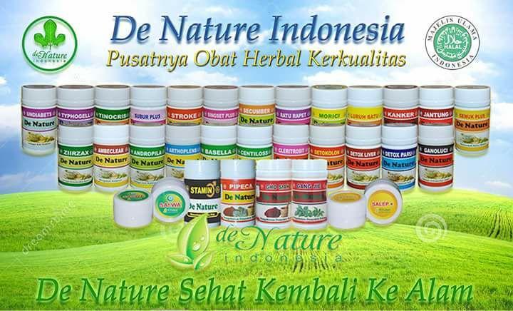 obat de nature indonesia.jpg